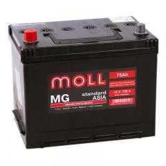 MOLL MG Standart  Asia 75А/ч п.п.
