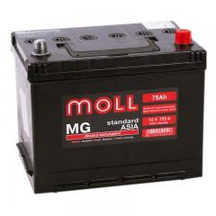 MOLL MG Standart Asia 75А/ч о.п.