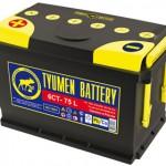 Купить аккумуляторные батареи tyumen в Мурманске